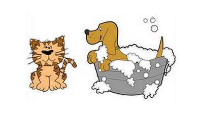 Formula de Shampoo suave para cães - cachorros