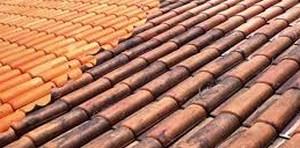 Formula de limpa telhados - telhas