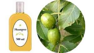 Formula shampoo com extrato de Nogueira para realçar cabelos escuros